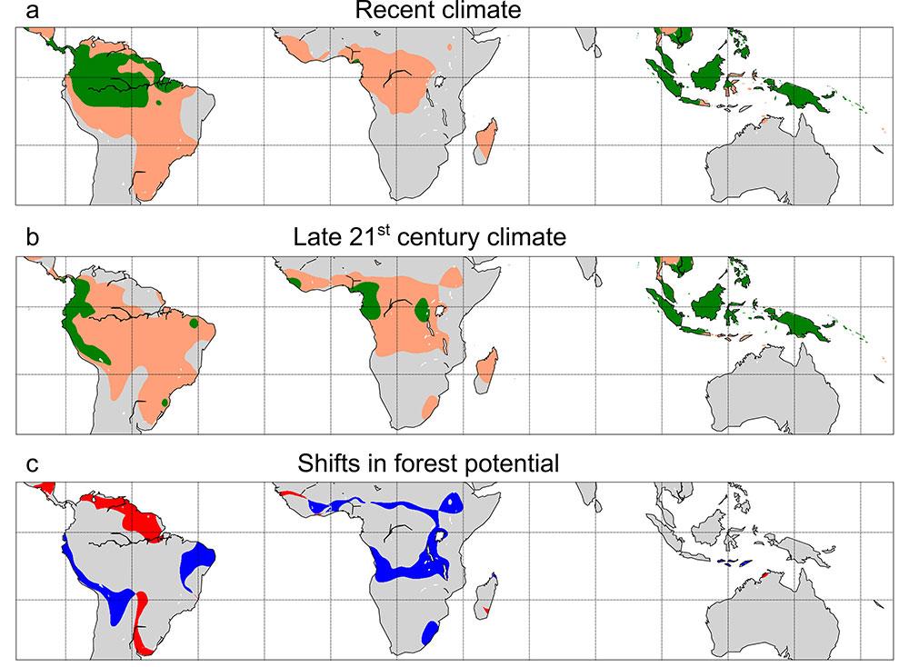 Alteração da histerese da cobertura florestal nos trópicos durante o século XXI