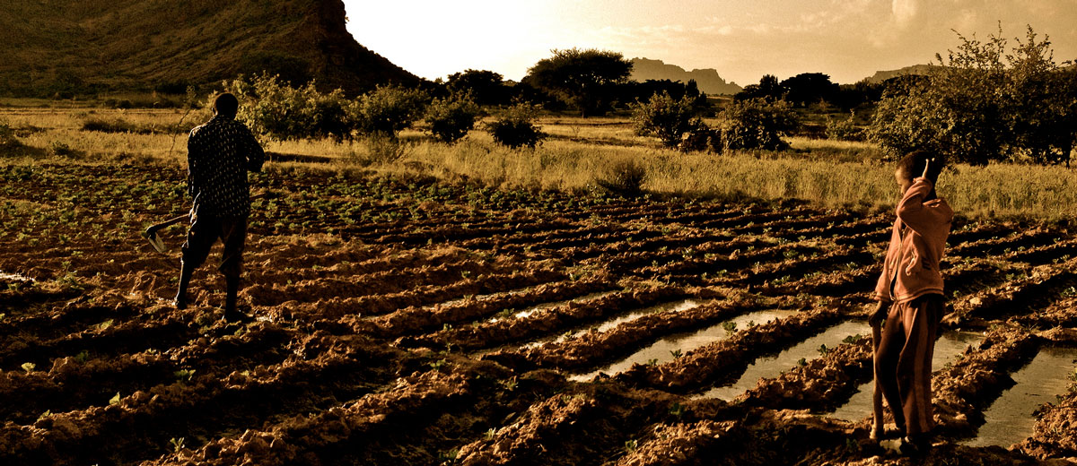 Growth overriding green in Ethiopia's agricultural
