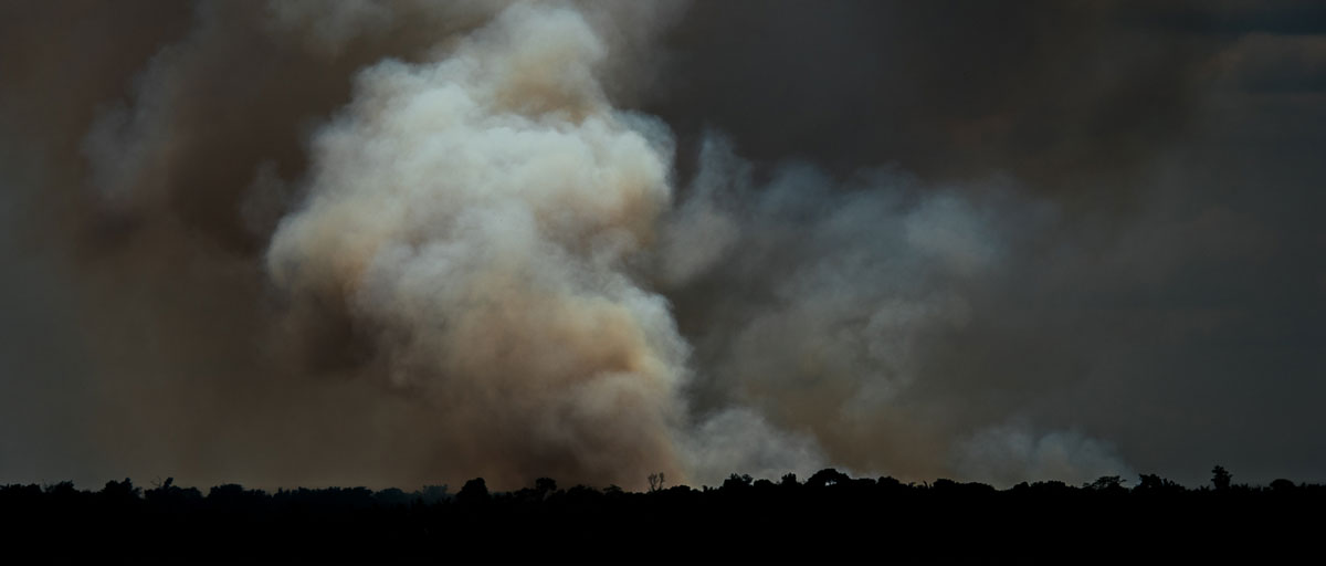 Fires from drought in the Amazon keep forest carbon ...